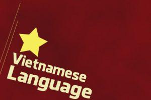 ベトナム人の社会人向け資格及び社会人教育環境